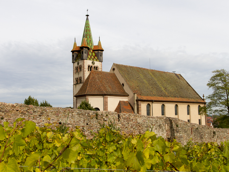 Alsace_2012-2563