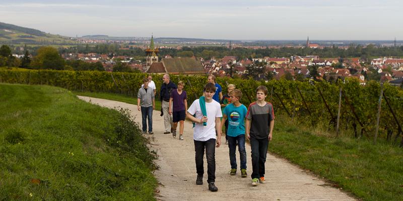 Alsace_2012-2574