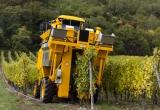 Alsace_2012-2575